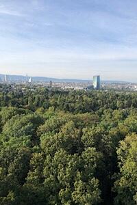 Blick vom Goetheturm
